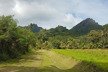 Tik-e Tours, Arorangi, Cook Islands
