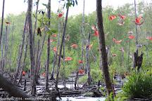 Bigi Pan, Nieuw Nickerie, Suriname