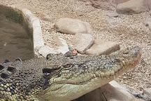 Kyabram Fauna Park, Kyabram, Australia