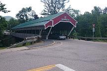 Honeymoon Bridge, Jackson, United States