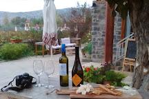 Avantis Estate Winery, Mitikas, Greece
