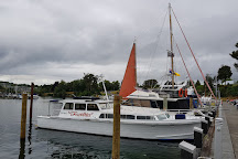 Sail Barbary - Eco Sailing Taupo, Taupo, New Zealand