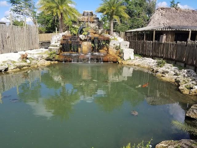 Tropical Everglades Visitors