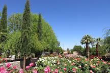 El Paso Municipal Rose Garden, El Paso, United States