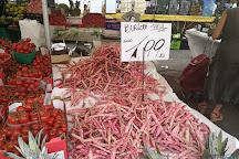 Viale Papiniano Market, Milan, Italy