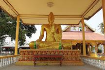 Don Daeng Island, Champasak Town, Laos