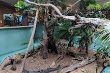 Edisto Island Serpentarium, Edisto Island, United States