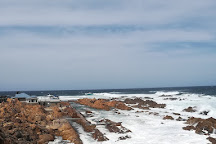 The Shark Lab, Mossel Bay, South Africa