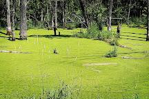 Seven Ponds Nature Center, Dryden, United States