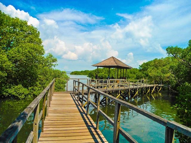 Mangrove Denpasar, Last Point