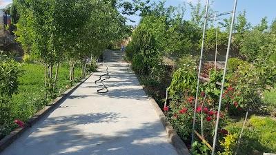 باغچه حاجی عمه