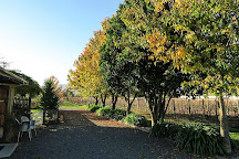Gibson Bridge Vineyard, Renwick, New Zealand