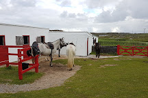 The Point Equestrian Centre and Pony Trekking, Ballyconneely, Ireland