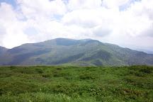 Mt. Katta, Zao-machi, Japan