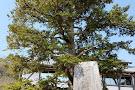 Naruto City Kagawa Toyohiko Memorial Hall