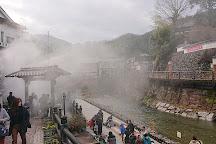 Arayu, Shinonsen-cho, Japan