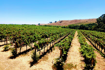 Napa Valley Wine Country Tours, Napa, United States