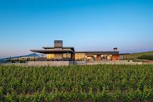 Ponzi Vineyards, Sherwood, United States