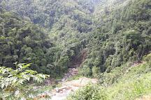 Cusuco National Park, San Pedro Sula, Honduras