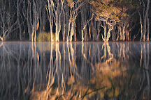 Lake Ainsworth, Lennox Head, Australia