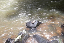 Ellinjaa Falls, Millaa Millaa, Australia