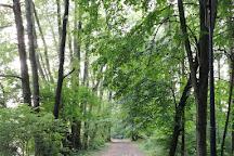Niebieskie Zrodla Nature Reserve, Tomaszow Mazowiecki, Poland
