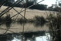 Ballona Creek, Marina del Rey, United States