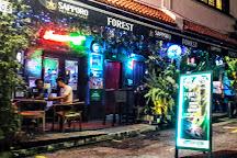Forest Darts Cafe, Singapore, Singapore