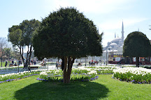 Free Istanbul Tours, Istanbul, Turkey