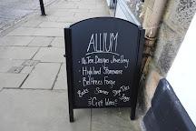 Allium, South Queensferry, United Kingdom