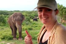 Kamal Safari Bundala Park, Hambantota, Sri Lanka