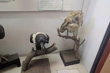 Copperbelt Museum, Ndola, Zambia