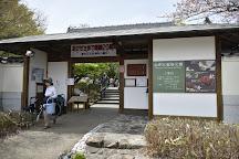 Shiranoe Botanical Garden, Kitakyushu, Japan