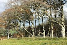 Cherhill White Horse, Calne, United Kingdom