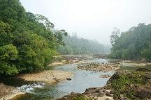 Endau-Rompin National Park, Labis, Malaysia