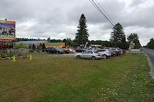 Arzo Sports and Fun Park, Alpena, United States