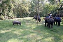 Chitwan National Park, Sauraha, Nepal