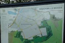 Brackmills Woods Country Park, Northampton, United Kingdom
