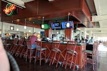 Tampa Bay Downs, Tampa, United States