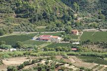 Olympia Land Winery, Olympia, Greece