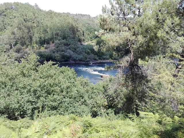 Trilho-Percursos Marginais do Rio Minho