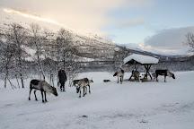 Polar Park, Bardu Municipality, Norway