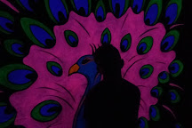 Glowgolf, Springfield, United States