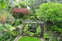 Gibraltar Botanic Gardens (The Alameda), Gibraltar