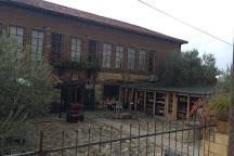 Adatepe Olive Oil Museum, Kucukkuyu, Turkey
