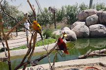 Dubai Safari Park, Dubai, United Arab Emirates