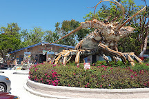 Florida Keys Visitor Center, Key Largo, United States