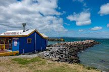 Stanley Seal Cruises, Stanley, Australia