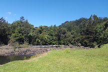 Waipoua Forest, Waipoua Forest, New Zealand