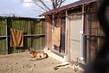 Suzaka City Zoo, Suzaka, Japan